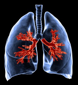 3D showing affect of COPD treatment on lungs