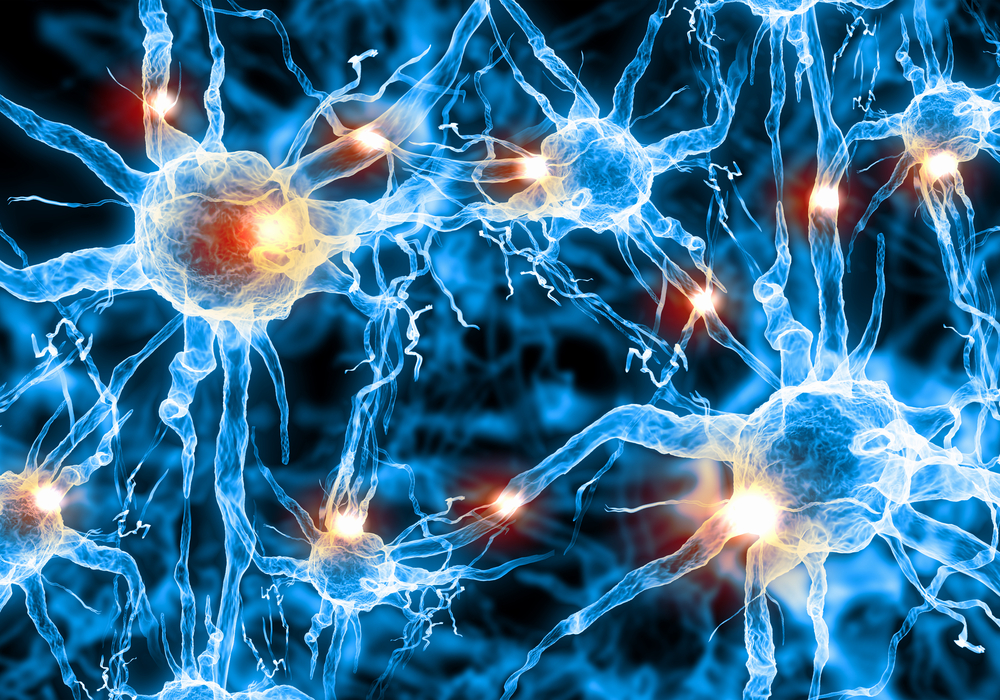 Neurons damaged during a stroke