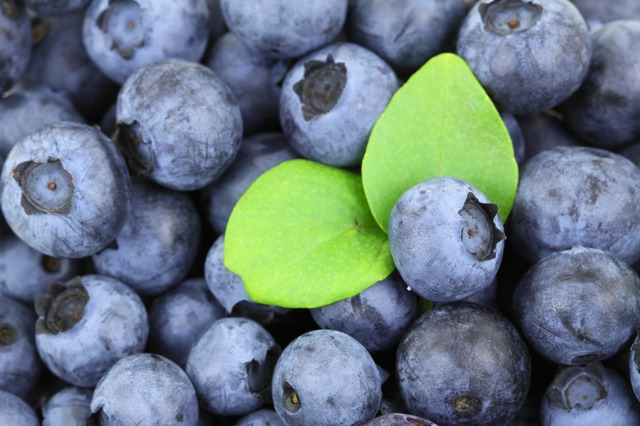 Blueberries shown in a bowl